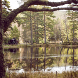 Idyllic Loch