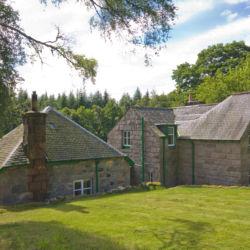 West Millfield Garden