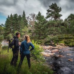 Walking in Glen Tanar