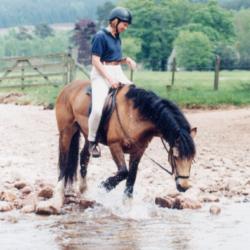 Glen Tanar Equestrian Centre