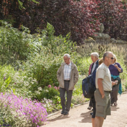 Walled Garden Open Day