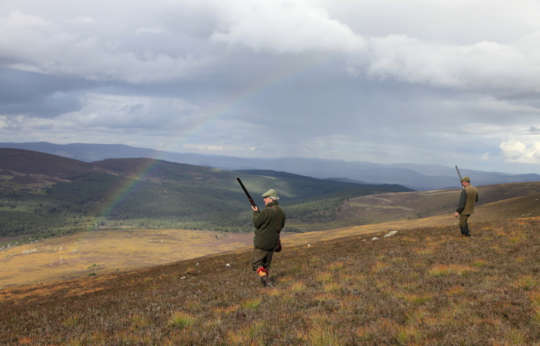 Walked up grouse shooting destination