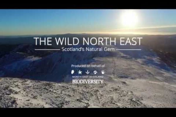 The Wild North East - Scotland's Natural Gem