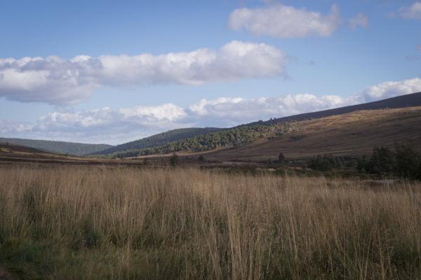 Macnab Challenge at Glen Tanar
