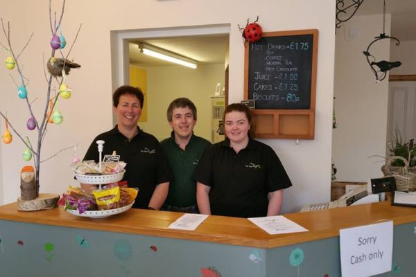 Walled garden welcomes The Seed Box