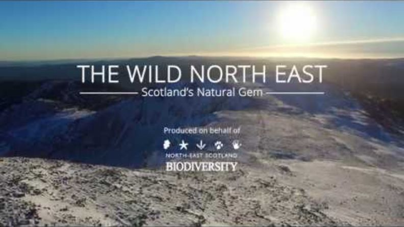 Video produced on behalf of North East Scotland Biodiversity Partnership