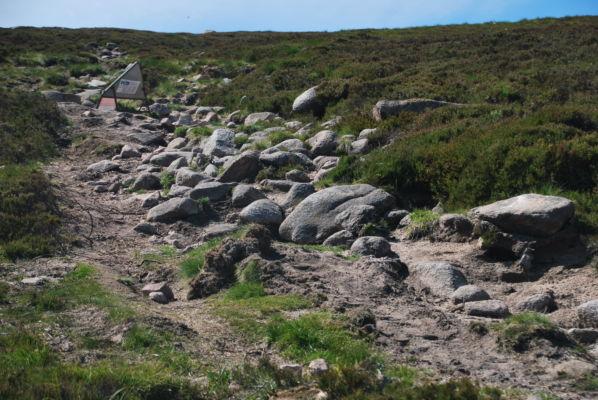Mt Keen Path Repair 4
