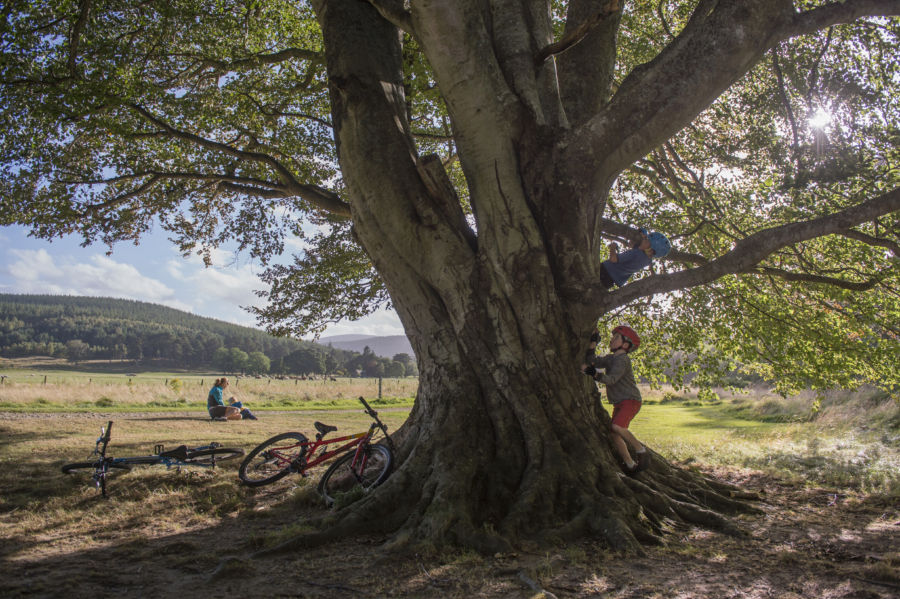 Family holiday adventure at Glen Tanar